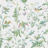 Cole & Son Hummingbirds behang Green Pink