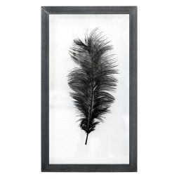 HKliving Ostrich Feather L wanddecoratie