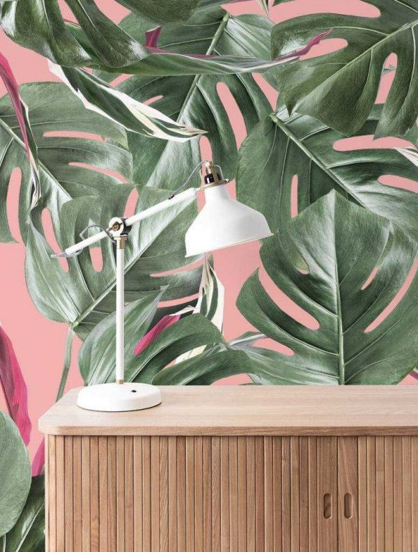 KEK Amsterdam Monstera Botanical leaves behang